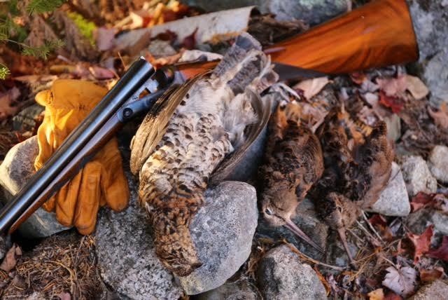 Nagel VH with Grouse